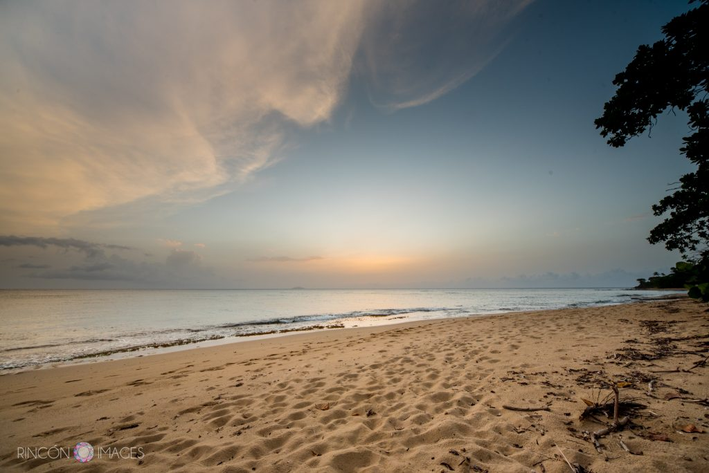 Photograph of the sunset from the beach by Villa DeZecheo in Rincon, Puerto Rico. The beach is wide and sandy with a few trees.