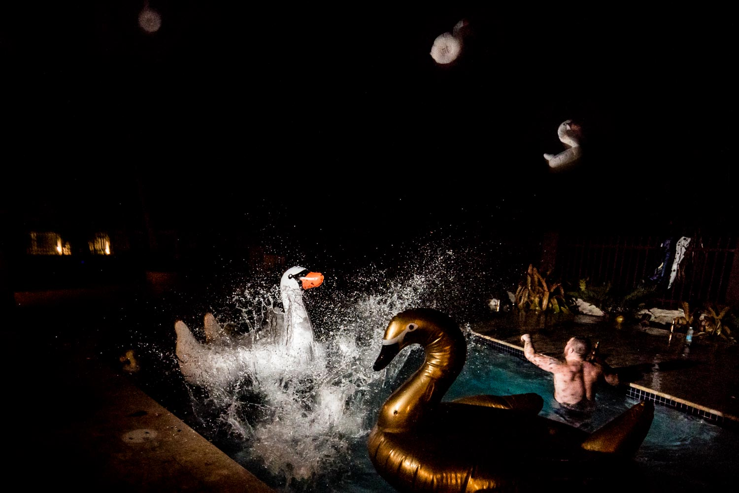 Wedding guests jumping into the outdoor swimming pool with gold and white pool floats shaped like swans.