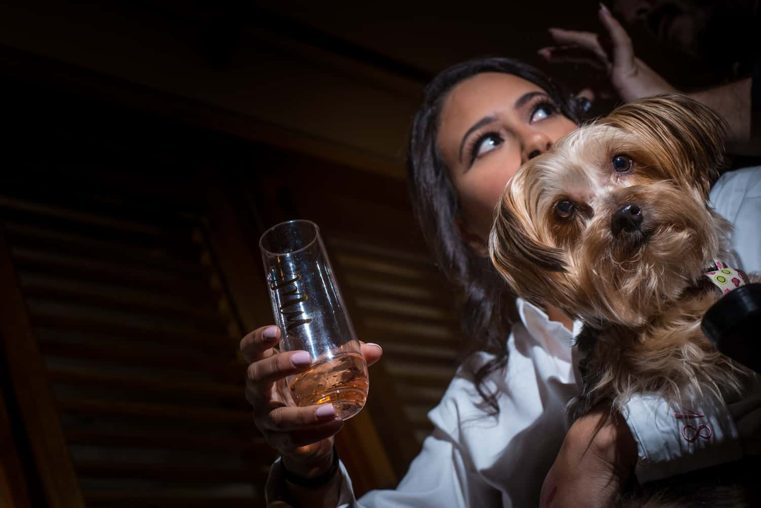 Bride holding champagne glass with a dog sitting on her lap